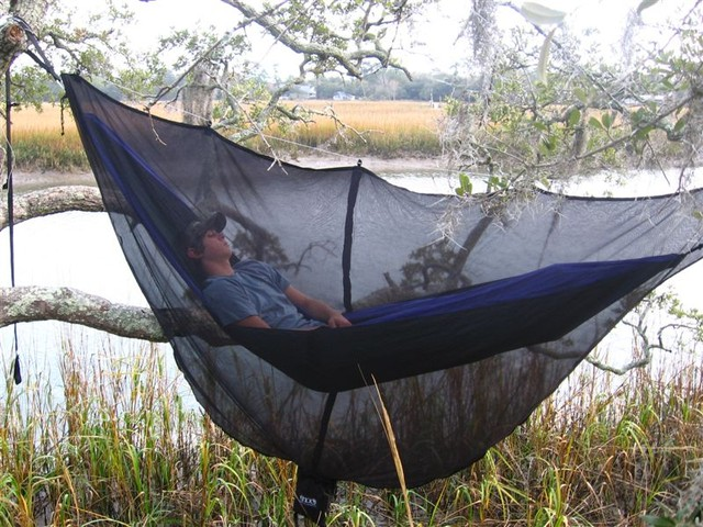 mosquito hammock with net