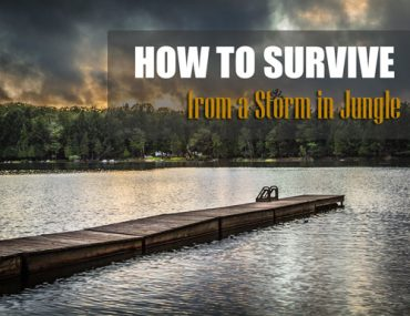 how-to-survive-from-storm-in-jungle