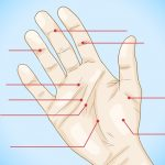 Is your Travel Journey Safe in Palmistry?