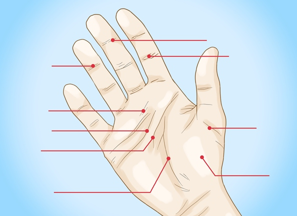 Is your Journey Safe in Palmistry?