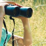 List of best HD quality/night vision Binoculars for Traveler, Hiker, Jungle Explorer or Hunter